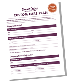 custom-care-plan